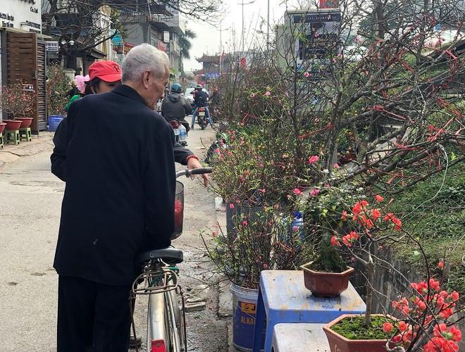 Nhộn nhịp chợ hoa Quảng An ngày cuối năm trong mưa lạnh Ảnh 25