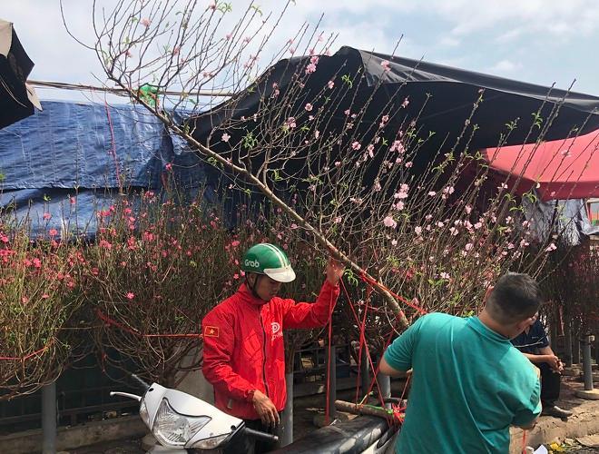 Nhộn nhịp chợ hoa Quảng An ngày cuối năm trong mưa lạnh Ảnh 2