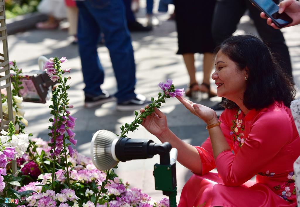 Chưa hết Tết, hàng trăm chậu hoa bị đạp nát ở đường hoa Nguyễn Huệ Ảnh 9