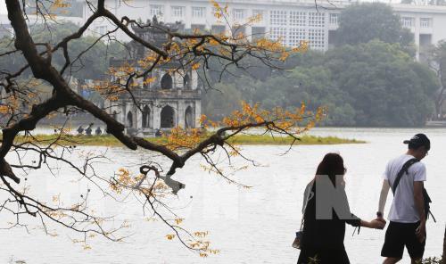 Đã có 142 lượt khách quốc tế hủy tour đến Việt Nam do virus corona Ảnh 1