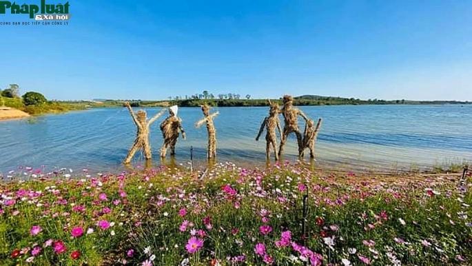 Vườn hoa Long Loi đẹp lung linh bên lòng hồ thủy điện Plêi Krông Ảnh 1