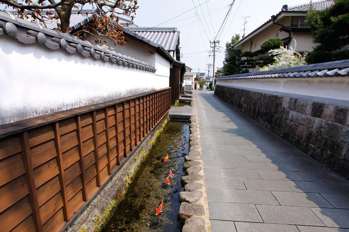 Nhật Bản: Du khách nước ngoài bất ngờ về rãnh thoát nước, cá có thể sinh sống Ảnh 1