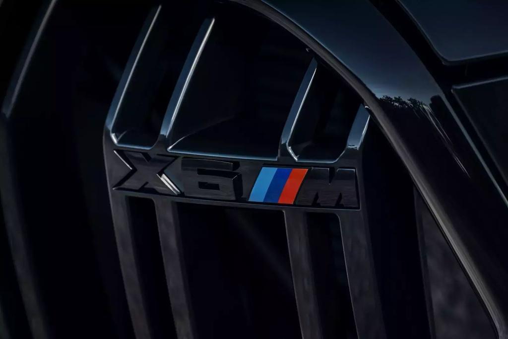 Đánh giá BMW X6 M 2020 – SUV hiệu suất cao đúng chất Ảnh 17