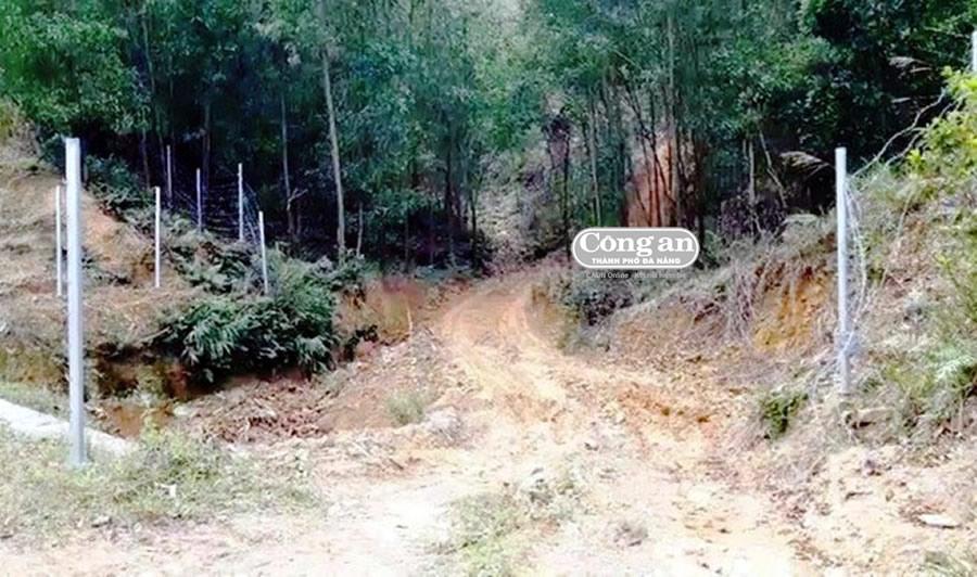Hơn 350m hàng rào trên cao tốc La Sơn- Túy Loan bị tháo gỡ Ảnh 1