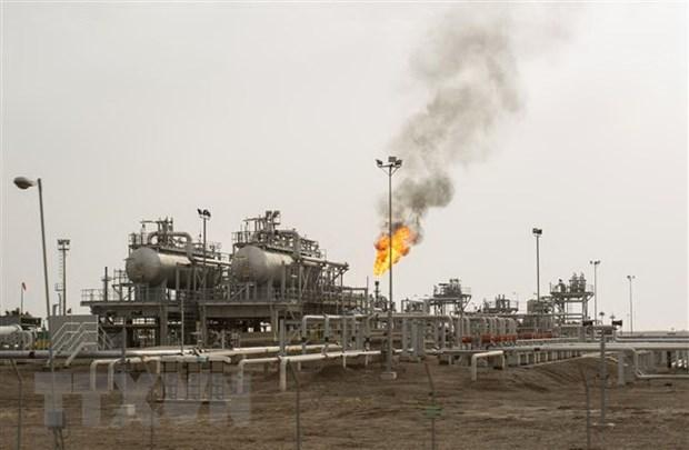 OPEC hạ mức dự báo tăng trưởng nhu cầu dầu mỏ thế giới Ảnh 1