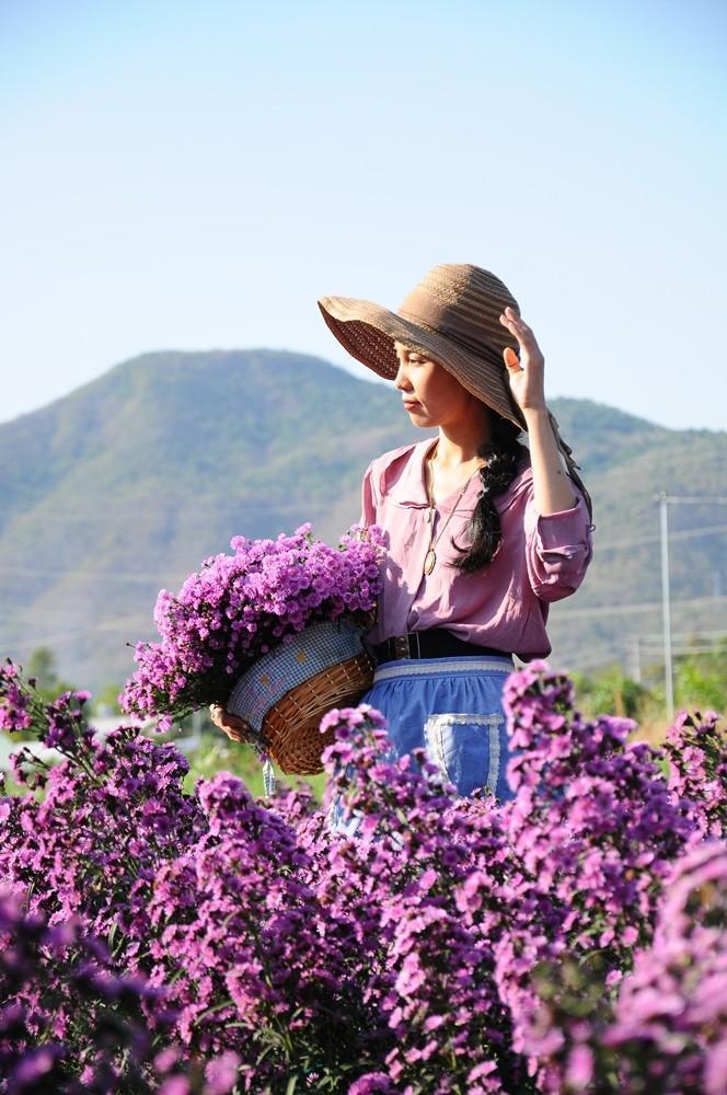 Vườn thạch thảo tím ở Bà Rịa ngỡ như cánh đồng hoa lavender ở Pháp Ảnh 6