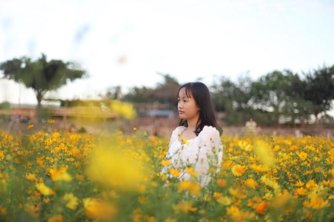 Rực rỡ sắc hoa bên 'dòng sông chảy ngược' Ảnh 4