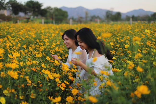 Rực rỡ sắc hoa bên 'dòng sông chảy ngược' Ảnh 3