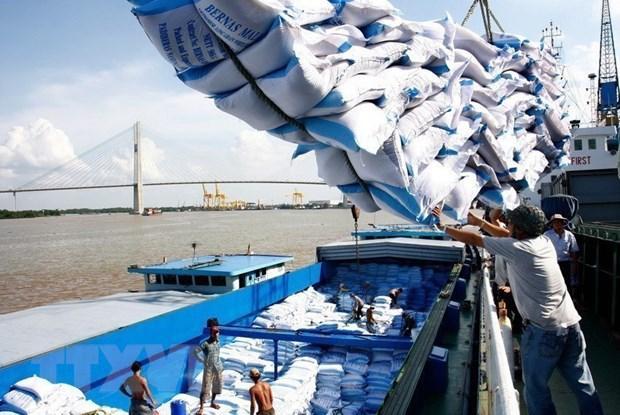Việt Nam luôn quan tâm an ninh lương thực, cùng với xuất khẩu gạo Ảnh 1