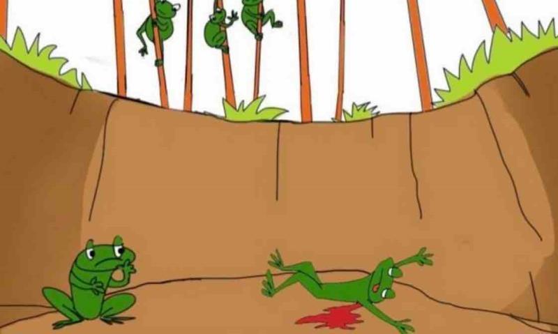Bài học niềm tin của hai chú ếch và những điều phải suy ngẫm Ảnh 1