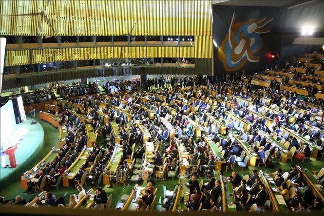 Hoãn hội nghị thượng đỉnh Liên hợp quốc về biến đổi khí hậu Ảnh 1
