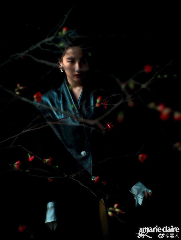 Ngắm không chán bộ ảnh của 25 'nam thần nữ thần' Hoa ngữ giữa mùa dịch! Ảnh 9