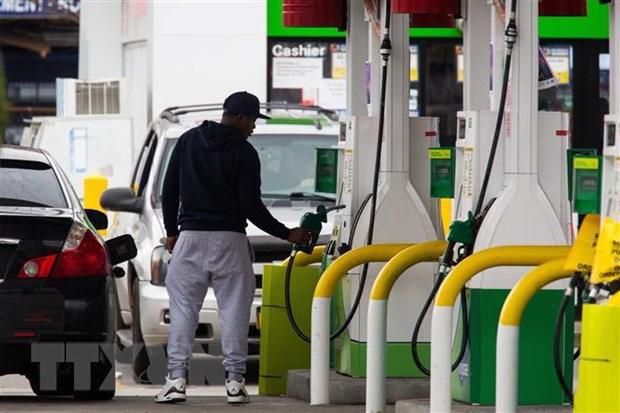 Giá dầu thế giới giảm xuống mức thấp nhất trong 18 năm Ảnh 1