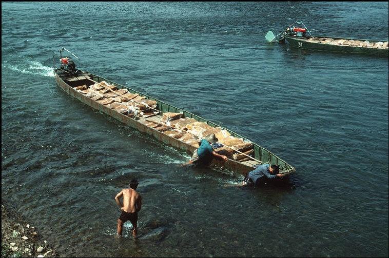 Nhịp sống hối hả, nhộn nhịp ở Quảng Ninh năm 1994-1995 Ảnh 13
