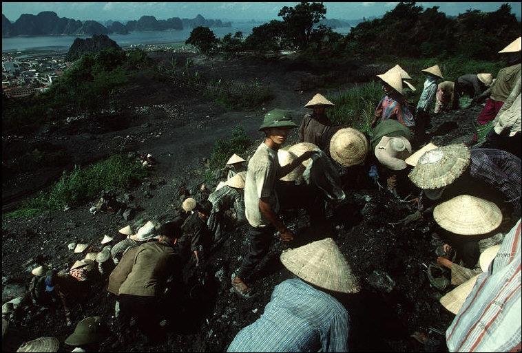 Nhịp sống hối hả, nhộn nhịp ở Quảng Ninh năm 1994-1995 Ảnh 8