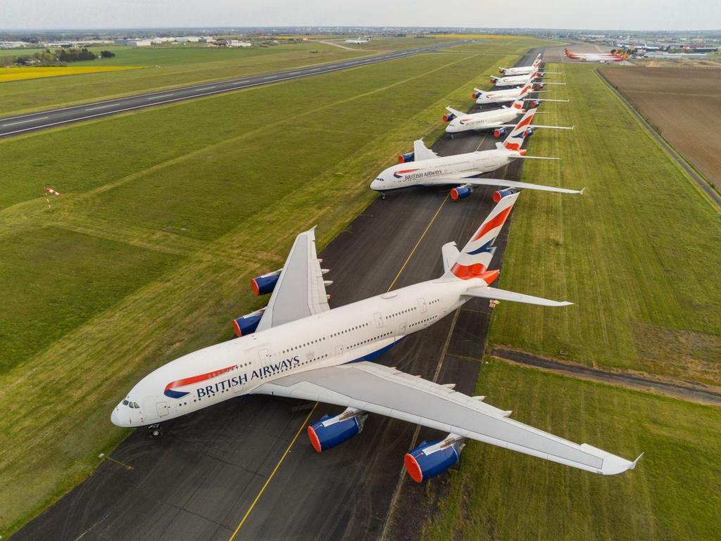 Các hãng hàng không đau đầu ngăn chim làm tổ trên máy bay Ảnh 7