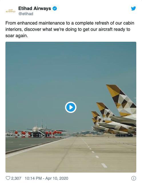 Các hãng hàng không đau đầu ngăn chim làm tổ trên máy bay Ảnh 4