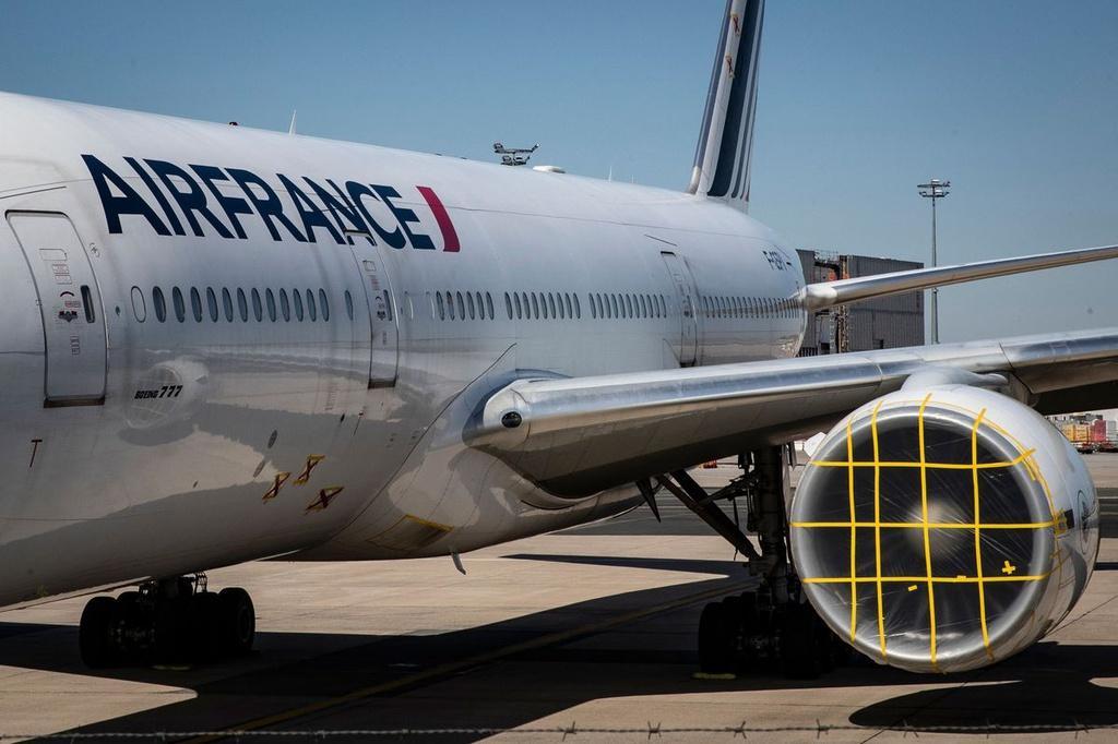 Các hãng hàng không đau đầu ngăn chim làm tổ trên máy bay Ảnh 5