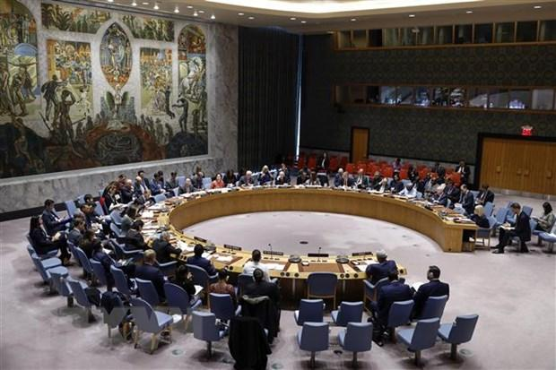 Hội đồng Bảo an thông qua nghị quyết về dịch bệnh COVID-19 Ảnh 1
