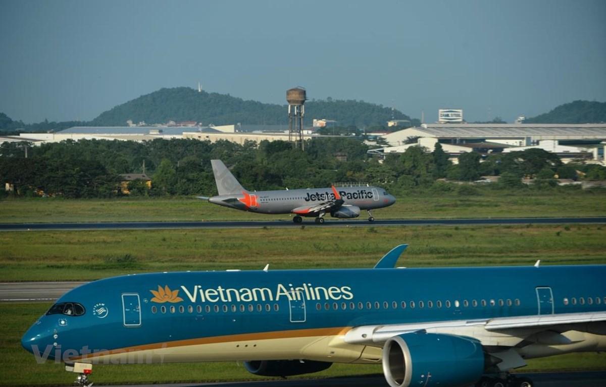 Hãng hàng không tăng cường khai thác các đường bay nội địa Ảnh 1