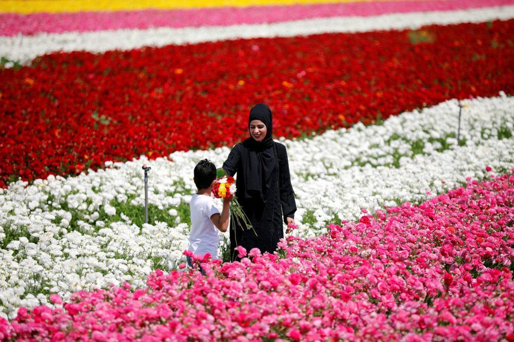 Một thế giới rực rỡ sắc hoa bất chấp đại dịch Covid-19 Ảnh 17