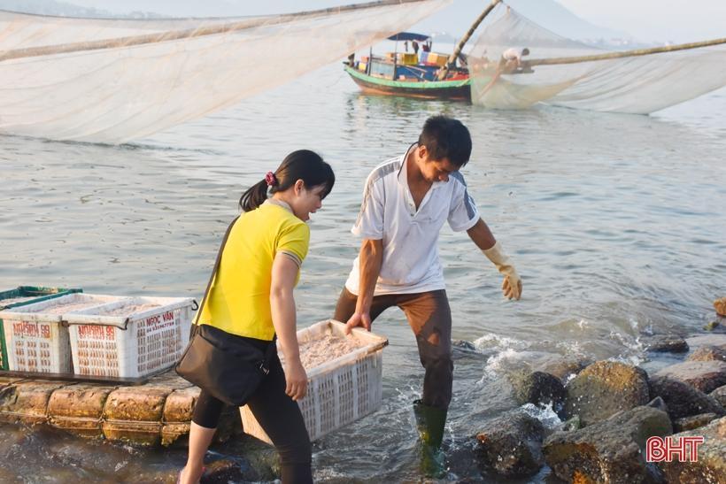 Ruốc theo từng luồng, ngư dân Cẩm Lộc phấn khởi đánh bắt Ảnh 4