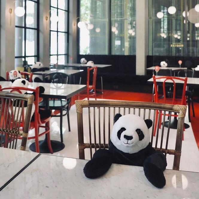 Nhà hàng Việt tại Thái Lan sử dụng nhân viên... gấu trúc để 'tiếp chuyện' thực khách Ảnh 6