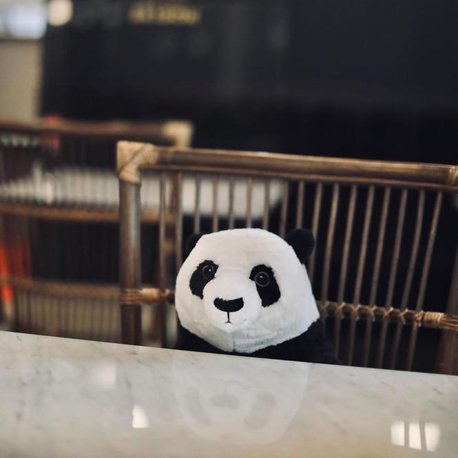 Nhà hàng Việt tại Thái Lan sử dụng nhân viên... gấu trúc để 'tiếp chuyện' thực khách Ảnh 2