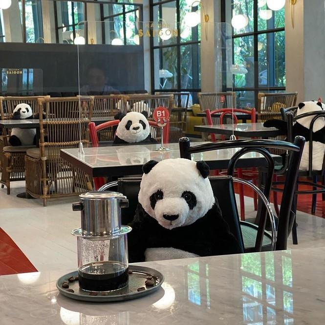 Nhà hàng Việt tại Thái Lan sử dụng nhân viên... gấu trúc để 'tiếp chuyện' thực khách Ảnh 1