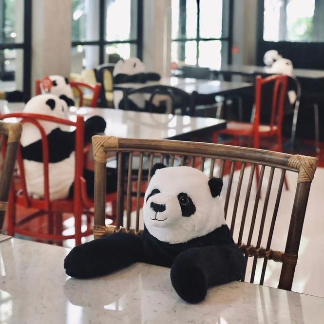 Nhà hàng Việt tại Thái Lan sử dụng nhân viên... gấu trúc để 'tiếp chuyện' thực khách Ảnh 3