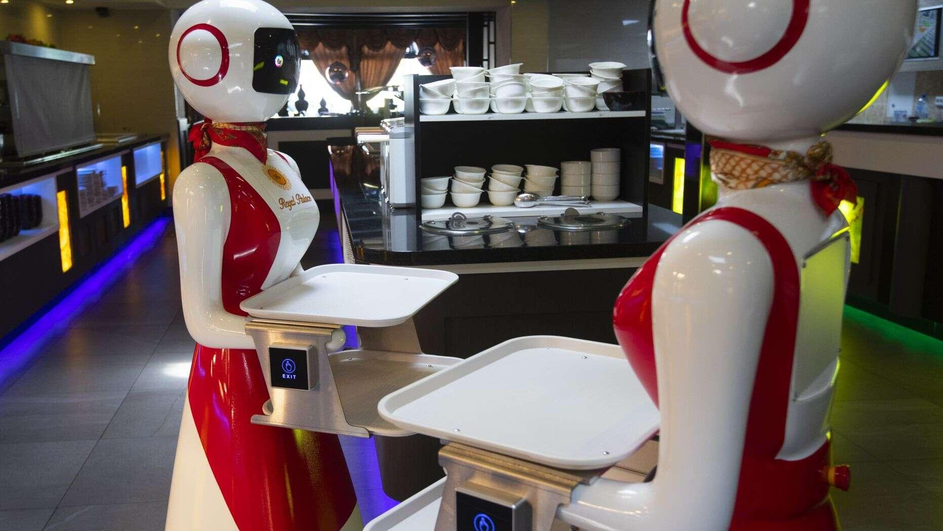 Robot phục vụ thực khách tại nhà hàng ở Hà Lan Ảnh 2