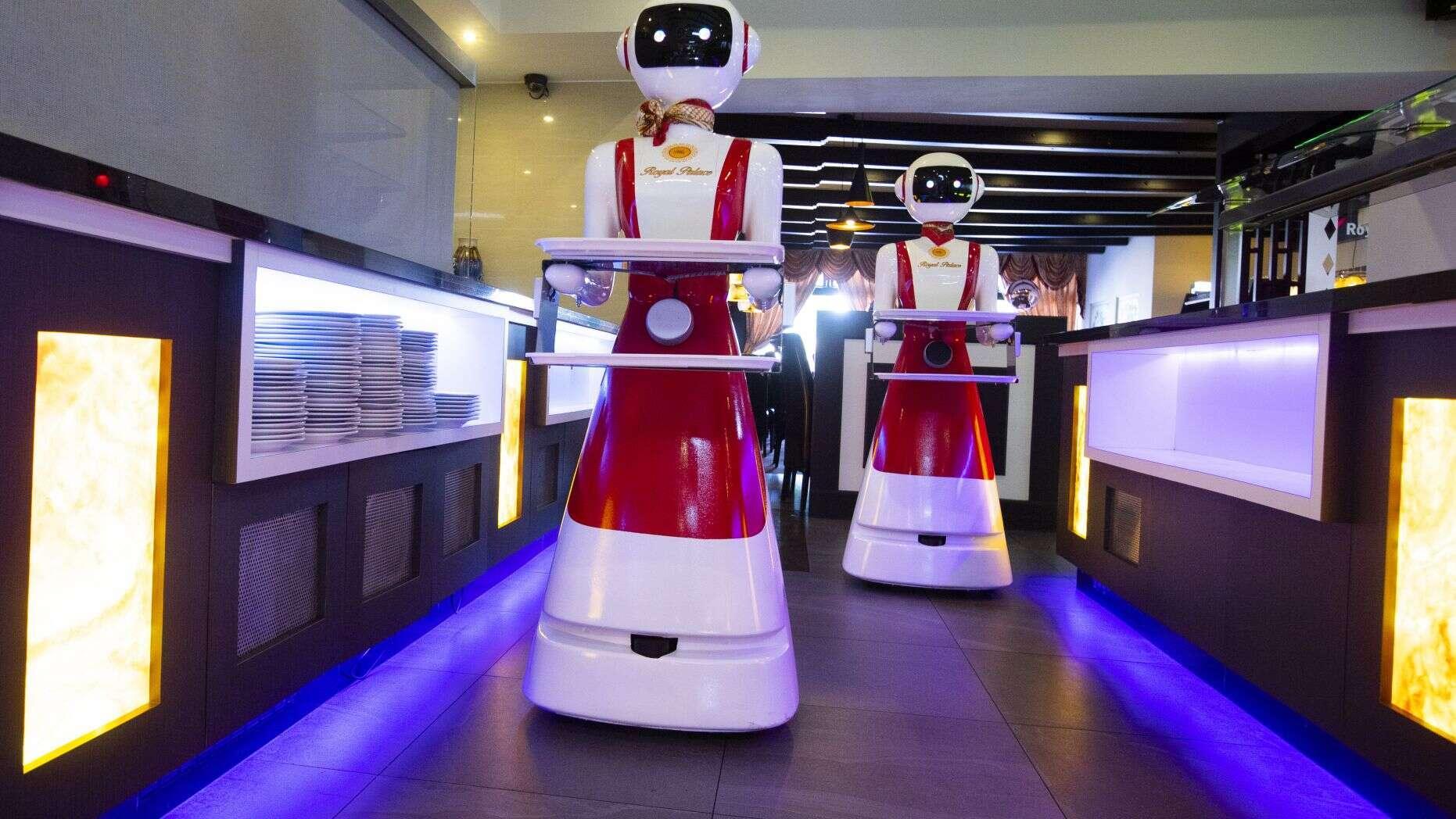 Robot phục vụ thực khách tại nhà hàng ở Hà Lan Ảnh 3