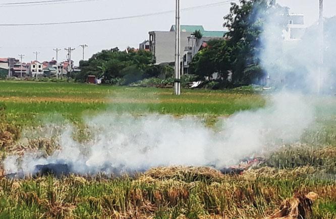 Hà Nội: Kiểm tra việc đốt rơm rạ gây ô nhiễm không khí Ảnh 1