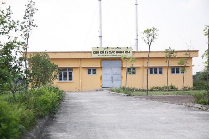 Mục sở thị Bệnh viện dành cho thú cưng lớn nhất Việt Nam Ảnh 11