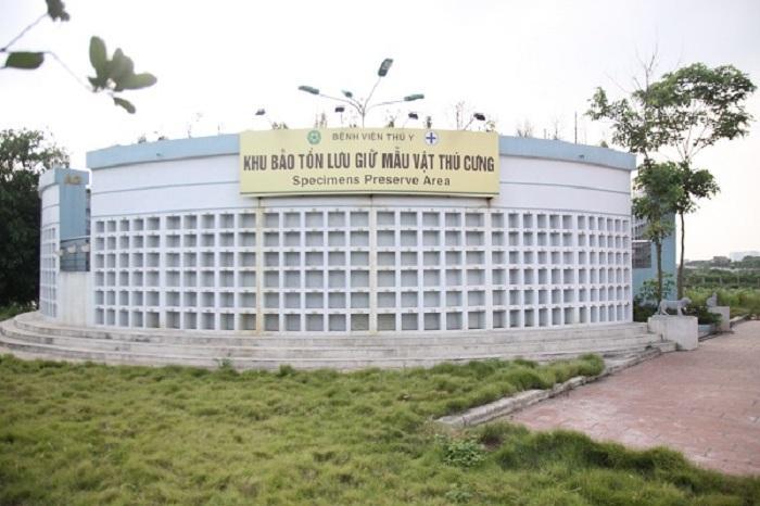 Mục sở thị Bệnh viện dành cho thú cưng lớn nhất Việt Nam Ảnh 12