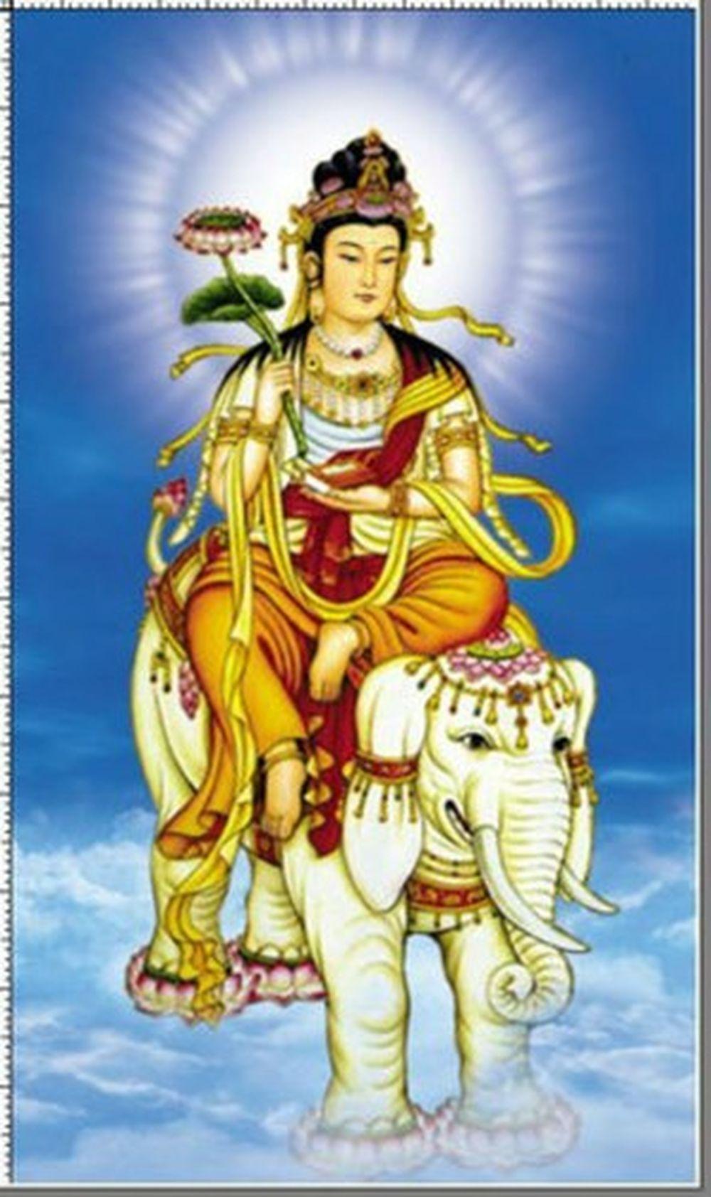 Phổ Hiền Bồ Tát danh hiệu là Samantabhadra chính là vị Phật bản mệnh cho tuổi Thìn và tuổi Tỵ. Ngài có năng lực siêu phàm, thân phân tại thập phương.