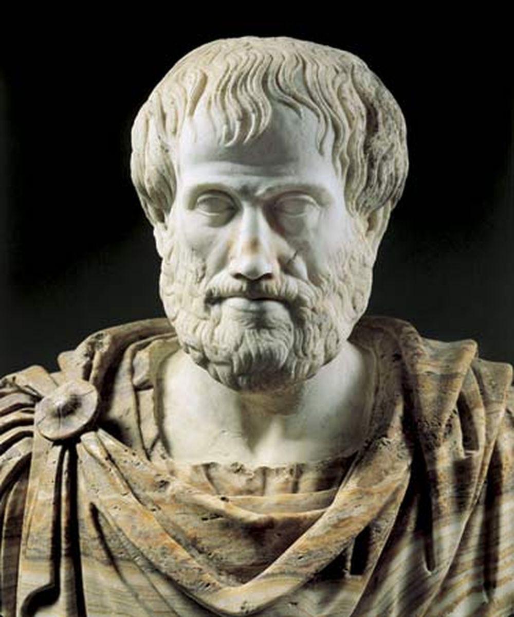 Aristotle được đánh giá là một trong những người thông minh, tài năng nhất  thời đó khi có nhiều nghiên cứu thực hiện ở nhiều lĩnh vực khác nhau như:  vật lý, ...