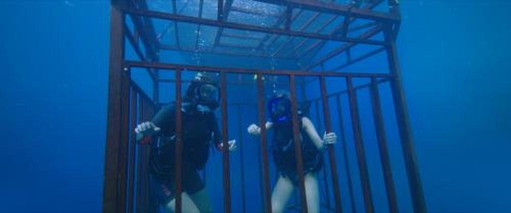 Bộ phim Hung thần đại dương còn có ý nghĩa về bài học sinh tồn của loài  người.