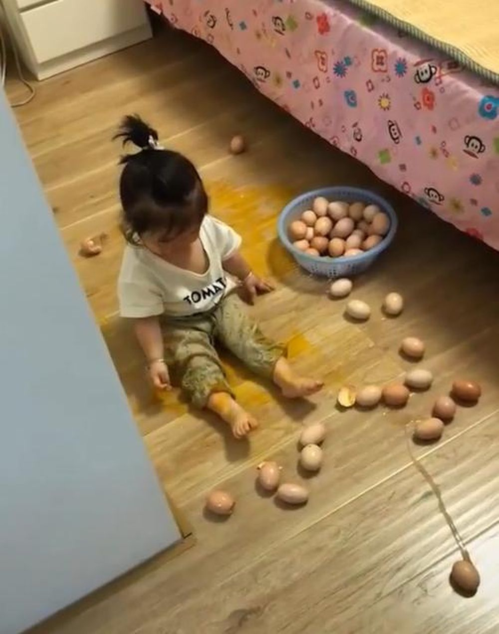 Chỉ là con muốn đếm trứng thôi mà