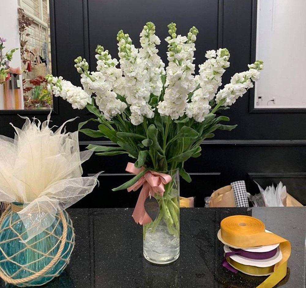 Thời gian gần đây, trên thị trường xuất hiện loại loại hoa phi yến nhập khẩu khiến nhiều chị em thích thú. Ảnh: Hoa Ưu đàm.