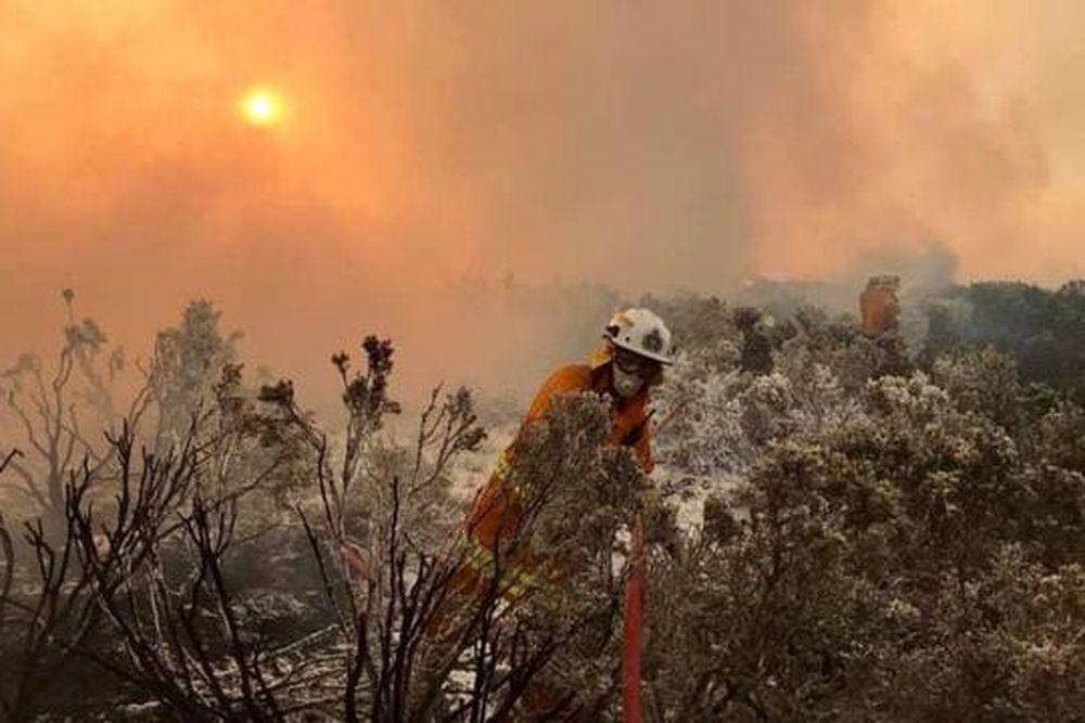 Kết quả hình ảnh cho cháy rừng Tasmania