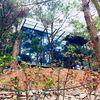 Vụ 'xẻ thịt' đất rừng xây biệt thự ở Sóc Sơn: Thanh tra toàn diện