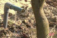 Nông dân Hà Tĩnh chôn lốp xe cũ quanh gốc cây để... chống hạn cho vườn mẫu