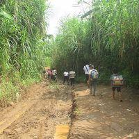'Ớn lạnh' những con đường đến trường của học sinh buôn H'Mông