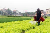 Chủ động phòng, chống hạn hán cho cây trồng
