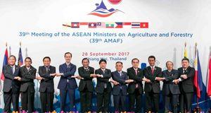 Việt Nam sẽ chủ trì tổ chức Hội nghị Bộ trưởng nông lâm nghiệp ASEAN (AMAF) lần thứ 40