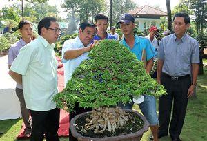 80 nhà vườn tham gia chợ phiên sinh vật cảnh lần 7