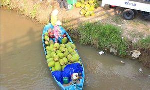 Kỳ 4: Khi thủy sản, trái cây bị 'phù phép'