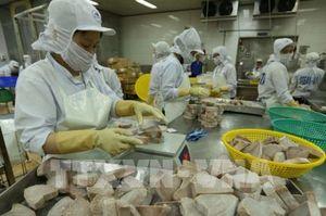 Bên lề Quốc hội: CPTPP - Cơ hội và thách thức của doanh nghiệp Việt