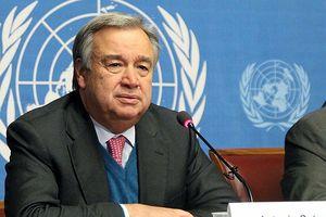 Tổng thư ký Liên hợp quốc lên án các vụ sát hại nhà báo